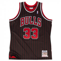 Scottie Pippen 1995-96...