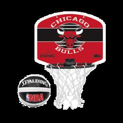 Canestrino Chicago Bulls