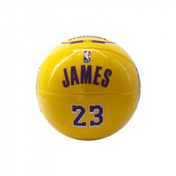 Mini Pallina Lebron James...