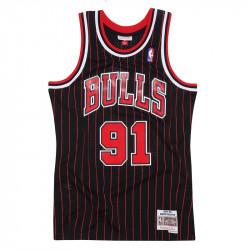Dennis Rodman 1995-96...