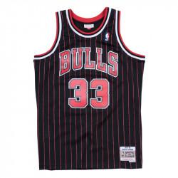 Scottie Pippen 1995-96...