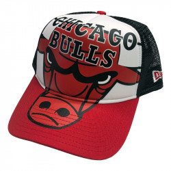 Chicago Bulls Trucker NBA...