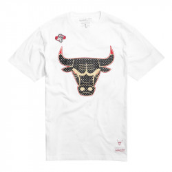 Tee Chicago Bulls Gold Logo