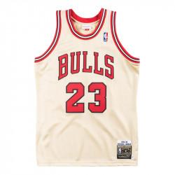 Michael Jordan 1995-96...