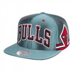 Snapback Chicago Bulls...