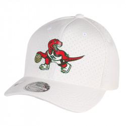 Snapback Toronto Raptors ACE