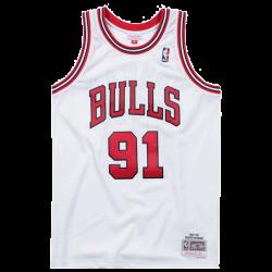 Dennis Rodman 1997-98...
